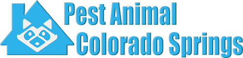 Colorado Springs Wildlife and Animal Removal